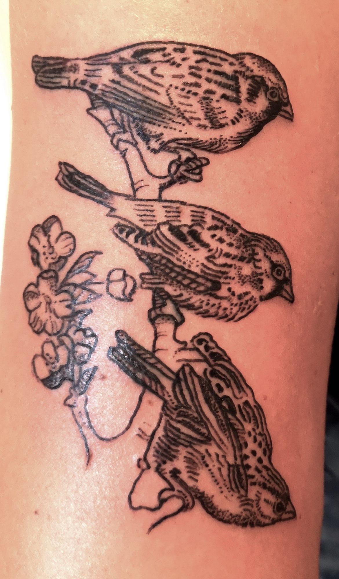 Tattoo Birds Elmar Karla