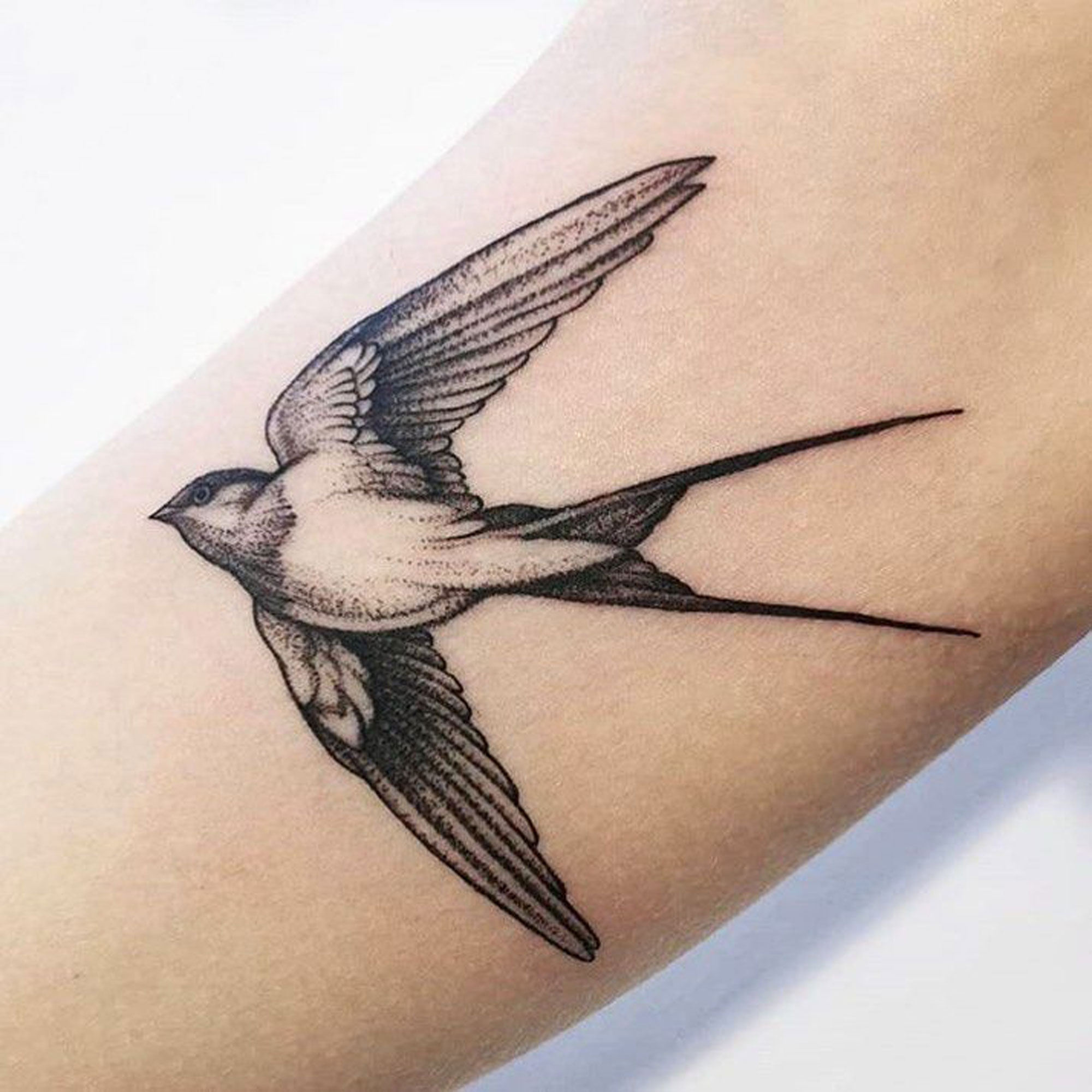 Tattoo Vogel Elmar Karla